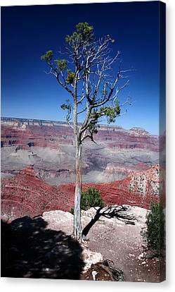 Canvas Print featuring the photograph Grand Canyon Number Two by Lon Casler Bixby