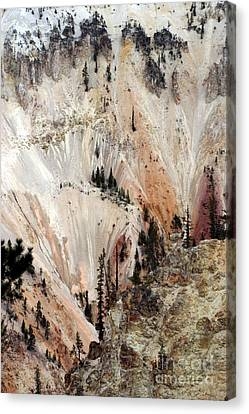 Grand Canyon Of Yellowstone Vertical Canvas Print by Living Color Photography Lorraine Lynch