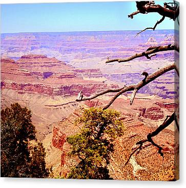 Canvas Print featuring the photograph Grand Canyon by Rima Biswas