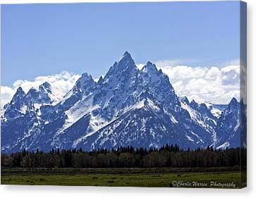 Grand Tetons 2 Canvas Print by Charles Warren