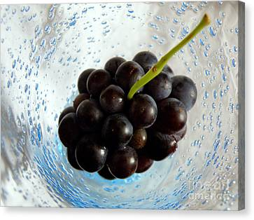 Canvas Print featuring the photograph Grape Cluster In Biot Glass by Lainie Wrightson