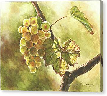 Grapes Canvas Print by Deb Richter