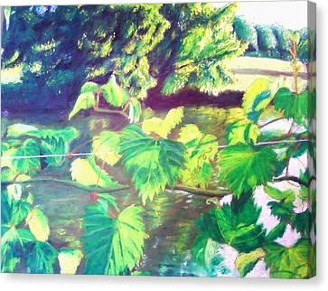 Grapevines Toledo Botanical Gardens Canvas Print by Samuel McMullen