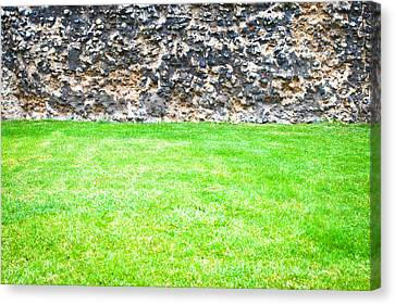 Grass And Stone Wall Canvas Print by Tom Gowanlock