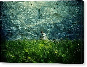 Canvas Print featuring the digital art Grassy by Andrea Barbieri