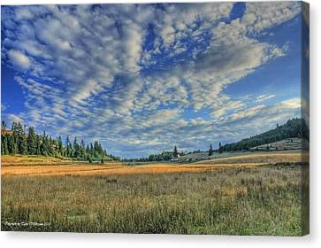 Grassy Field Canvas Print by Tyra  OBryant