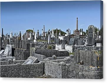 Gravestones In Graveyard Canvas Print