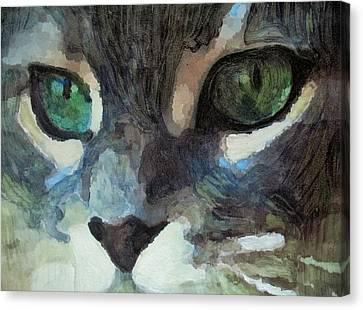 Gray Cat Canvas Print by G Stewart