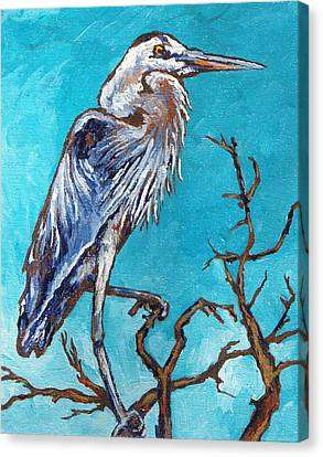 Great Blue Heron Canvas Print by Sandy Tracey