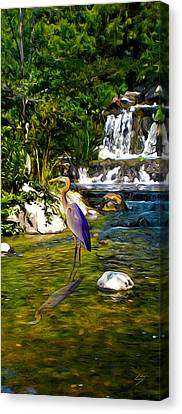 Great Blue Heron Canvas Print by Sotiri Catemis