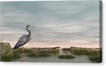 Great Blue Heron Canvas Print by Walter Colvin