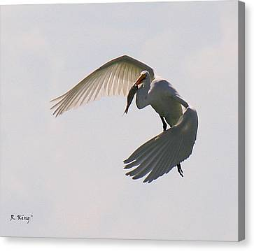 Great Egret Successful Fishing Canvas Print