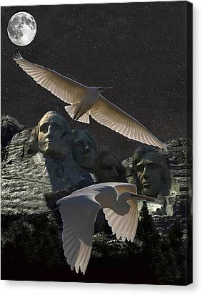 Great Egrets Mount Rushmore  Canvas Print by Eric Kempson