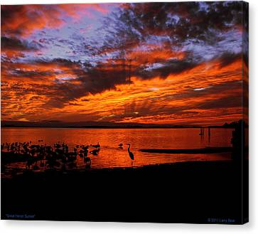 Great Heron Sunset Canvas Print