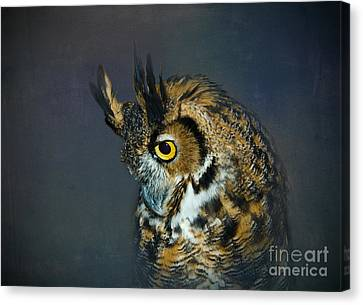 Great Horned Owl Canvas Print by Betty LaRue