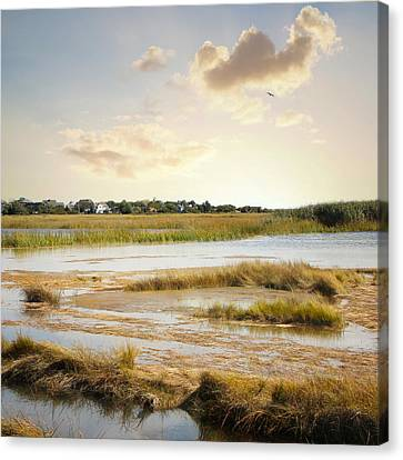 Great Marsh Ll Canvas Print by Karen Lynch