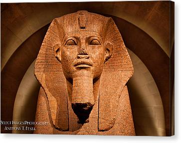Lourve Canvas Print - Great Sphinx Of Tanis by Anthony Festa