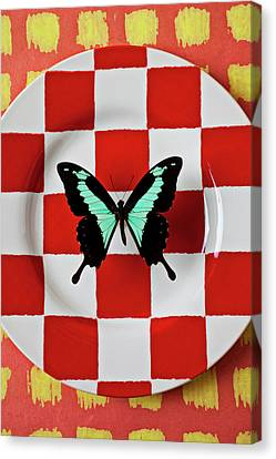 Arthropod Canvas Print - Green And Black Butterfly On Red Checker Plate by Garry Gay