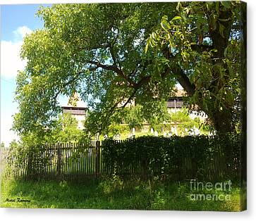 Canvas Print featuring the photograph Green Arch by Ramona Matei