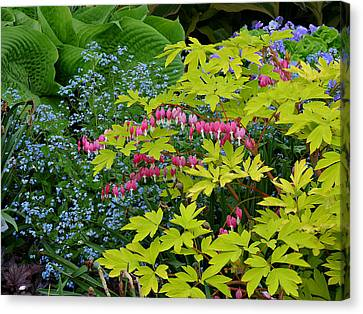Canvas Print featuring the photograph Green Bay Botanical Gardens by Judy  Johnson