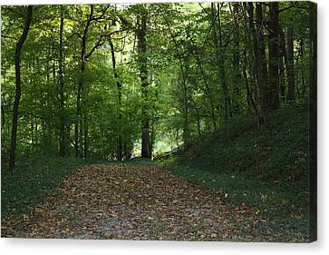 Green Cemetery Road Canvas Print by James Collier