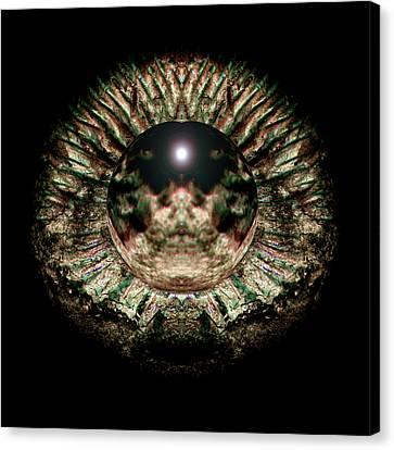 Green Eye Sphere Canvas Print by David Kleinsasser