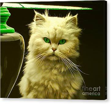 Feline Canvas Print - Green Eyes by Jerry L Barrett