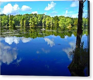 Green Field Lake Canvas Print