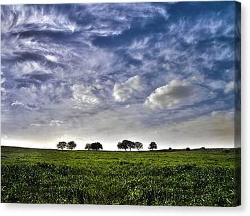 Green Fields And Blue Sky Canvas Print by Meir Ezrachi