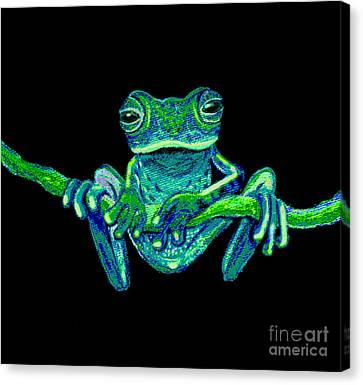 Green Ghost Frog Canvas Print by Nick Gustafson