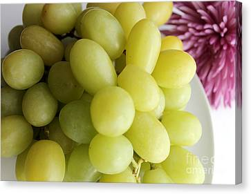 Green Grapes And Purple Mum Canvas Print by Barbara Griffin