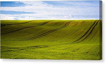 Green Hill Canvas Print by Svetlana Sewell