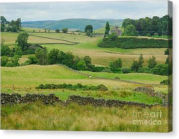 Green Hills Of Galloway Canvas Print by John Kelly