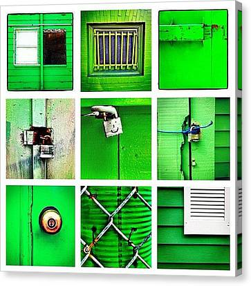 Green Canvas Print by Julie Gebhardt