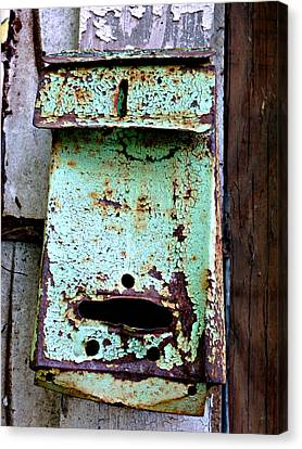 Green Mailbox Canvas Print by Jo Sheehan