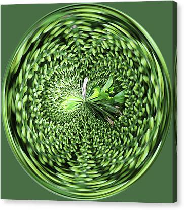 Green Orb Canvas Print