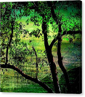 Green Canvas Print by Shirley Sirois