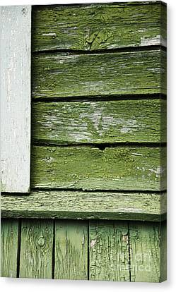 Canvas Print featuring the photograph Green Wooden Wall by Agnieszka Kubica
