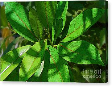 Greensleaves2 Canvas Print