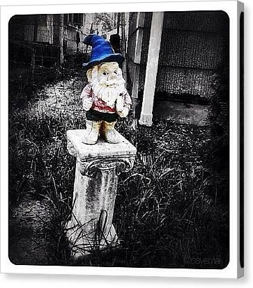 Ohio Canvas Print - Greenville's Garden Gnome by Natasha Marco