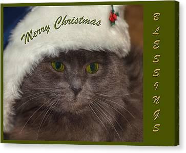 Grey Cat Santa 2 Canvas Print by Joann Vitali