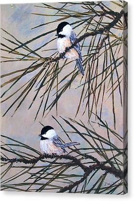 Grey Pine Chickadees Canvas Print by Kathleen McDermott