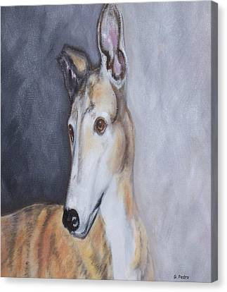 Rescued Greyhound Canvas Print - Greyhound In Thought by George Pedro