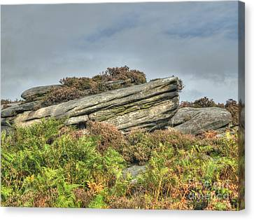 Gritstone Outcrop - Colour Canvas Print by Steev Stamford