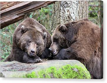 Canvas Print featuring the photograph Grizzley - 0002 by S and S Photo