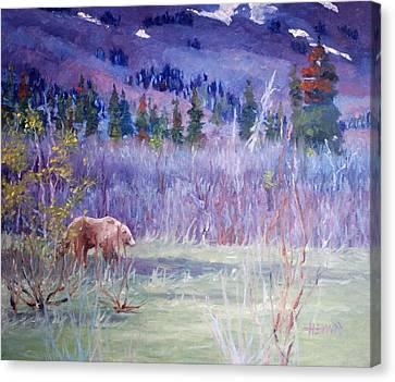 Grizzly Bear Near Haines Alaska Canvas Print