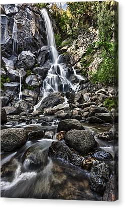 Grizzly Falls Canvas Print