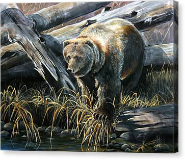 Grizzly Pond Canvas Print by Scott Thompson