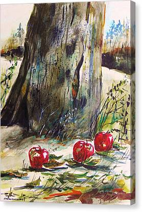 Ground Apples Canvas Print by John Williams