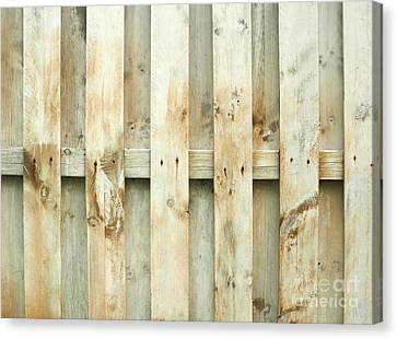 Grungy Old Fence Background Canvas Print